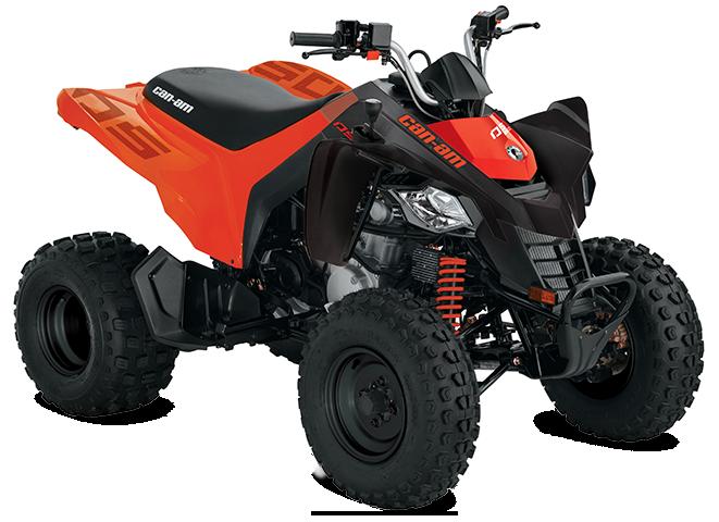 Квадроцикл детский BRP Can-Am DS 250 2020 модельного года