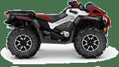 Квадроциклы CAN-AM